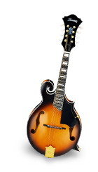 Mandolin Course